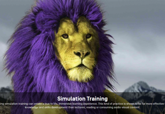 Simulation Training Software from Day One Technologies